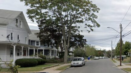 Pictured: West Main Street in Norwalk, Connecticut, where a cat was killed as a result of a drive-by shooting.