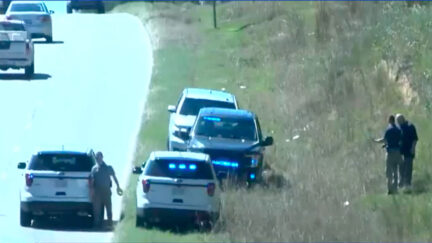 Police investigate woods across from home where Jessica Martin's ex-husband allegedly killed himself after committing a triple-murder.