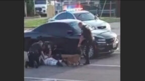 image of Woodson Terrace, Missouri Police Dog Arrest